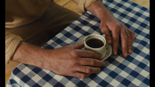 Rory's hands in Slow West